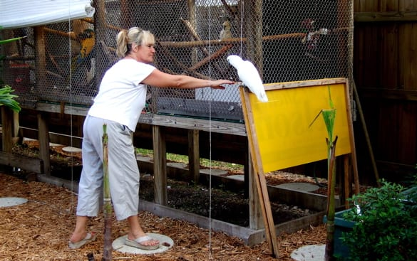 LuAnn Apple, founder of M.A.R.S., with her bird Parker