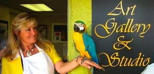 Florida Parrots Rescue Gallery